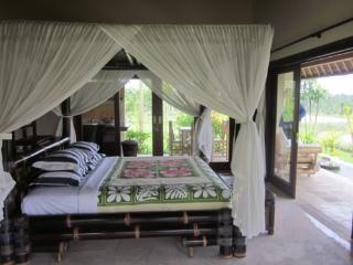 Villa Aruna Ubud Bali - Ubud vacation rentals