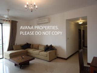 3 BR Fully Furnished Apt in Colombo 8 near Odel - Colombo vacation rentals