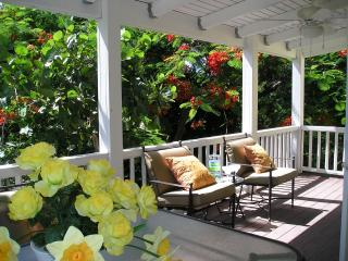 Nice Condo with Internet Access and A/C - Frederiksted vacation rentals