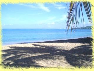 1 bedroom Apartment with Internet Access in Frederiksted - Frederiksted vacation rentals