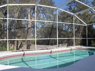 Great home in quiet area, private heated pool , TV in each bedroom, Wi-Fi - Disney vacation rentals