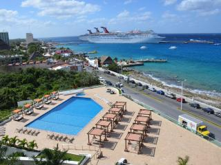 The View!  Must See Pics/Reviews!  Great Pricing. - Cozumel vacation rentals