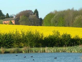 Luxury cottage in idyllic rural setting - Thorpe On The Hill vacation rentals