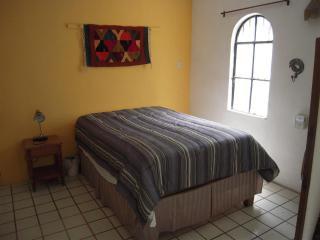 Mexican Style Studio Apt #5 - Puerto Vallarta vacation rentals