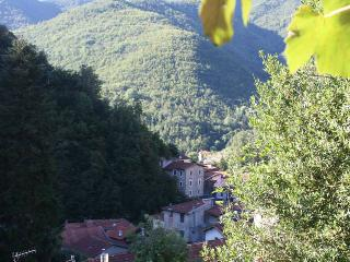 Traditional Stone Holiday Cottage  In Liguria, Italy - Triora vacation rentals