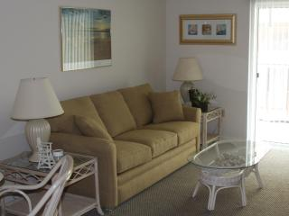Ocean City, Maryland Condo near the beach - Ocean City vacation rentals