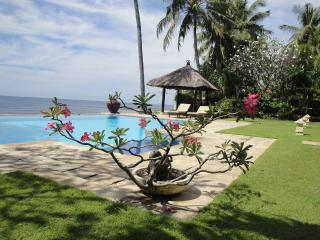 Villa OnzeBunga beachfront with pool north Bali - Sembiran vacation rentals