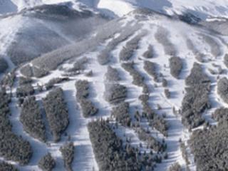 Spring Break 2/28 -3/6 Grand Timber ski in-ski out - Breckenridge vacation rentals