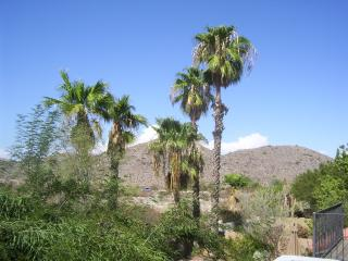 Mountain View 3 bedroom House in Ahwatukee! - Phoenix vacation rentals