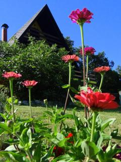 Beautiful Condo in Sveti Martin na Muri with Towels Provided, sleeps 4 - Sveti Martin na Muri vacation rentals