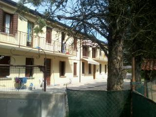 large apt near Venice in a green area - Zelarino vacation rentals