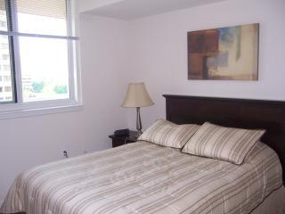 2 Bedroom Apartment DC Metro Area - Arlington vacation rentals