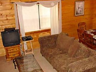 Dogwood Lodge Mountain Escape - Image 1 - Eureka Springs - rentals