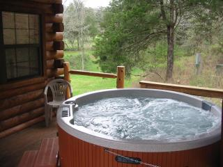 Dogwood Lodge Mountain Escape - Eureka Springs vacation rentals