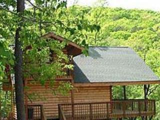 Enchanted Forest: Hilltop Hideaway Cabin - Image 1 - Eureka Springs - rentals