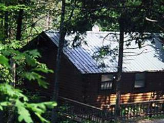Enchanted Forest: Deluxe Mountain Top Cabin 2 - Image 1 - Eureka Springs - rentals