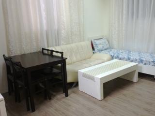 2-rooms Appatment in Tel Aviv №1 - Ramat Gan vacation rentals