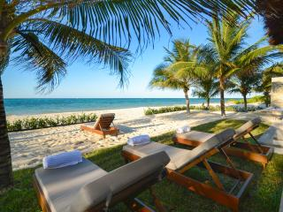 Private & Luxurious Villa on Beach!  NEW TO MARKET - Cozumel vacation rentals