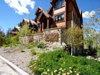 Luxury 4 Bed, 4.5 Bath, Ski-In/Ski-Out Condo (B) - Telluride vacation rentals
