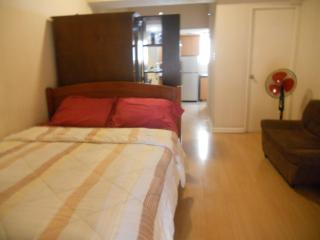 Walking Distance From Greenbelt - Tibiao vacation rentals