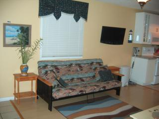 Dewey: Luxury,Location & Convenience with Pool - Dewey Beach vacation rentals