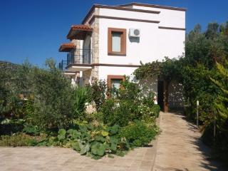 Luxury Splendid Villa  - (013VA-2 Upper Villa and 013VA1 lower villa) - Bingol Province vacation rentals