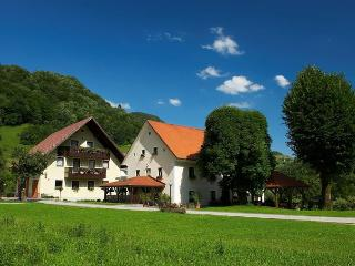 Sunny 4 bedroom Cerkno Bed and Breakfast with Satellite Or Cable TV - Cerkno vacation rentals