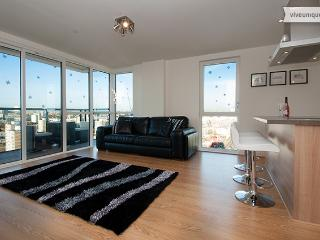Panoramic Tower, 2 bed 2 bath, gym and views, Canary Wharf - London vacation rentals
