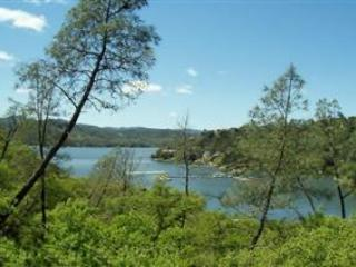 Cois Dara-Shore Of Oak!-Lake Front with huge deck - Lake Nacimiento vacation rentals