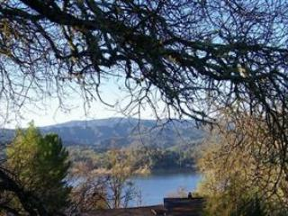 Lake Escape-Lake View Home w/Private Slip Pets OK - Lake Nacimiento vacation rentals