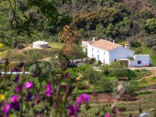 Lovely authentic Andaluz farmhouse in NaturalPark - Riogordo vacation rentals