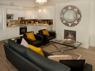 Luxury & views - 2 mins walk beach, shops, pubs - County Dublin vacation rentals