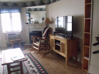 Spacious 1 bdr Condo close to Loon Mountain - Lincoln vacation rentals
