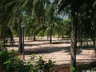 Luxury Hidewaway in secluded tropical gardens, - Aracati vacation rentals