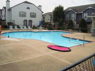 outdoor pool about 10 steps from the condo (seasonal) - BEAUTIFUL CONDO IN VA BEACH TOWN CENTER - Virginia Beach - rentals