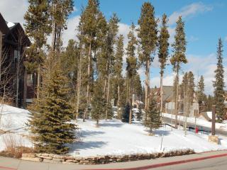 5*Condo  Spring Break  3/14-3/21 SkiN-out sleep 8 - Breckenridge vacation rentals