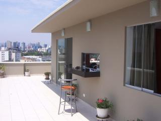 MIni-Penthouse - Posh Area in Miraflores Close to Markets, Theaters, Restaurants - Lima vacation rentals