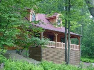 The Bear Dance Cabin at Wintergreen - Steeles Tavern vacation rentals