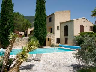 Villa in Drôme provencale (Nyons) 2-6p. with private heated pool, WIFI - Nyons vacation rentals
