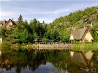 Plateau Sur La Montagne - EXPERIENCE THE TREMBLANT LIFESTYLE - Lac-Superieur - rentals