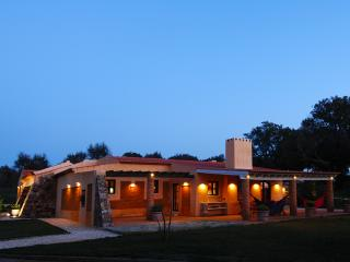 Natural Park of the Costa Vicentina on Alentejo - Proenca-a-Nova vacation rentals
