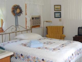 Finger Lakes Private Cottage for Two at the White - Trumansburg vacation rentals