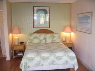 Cozy Quality..Custom Studio - Kihei vacation rentals