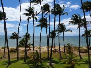 Hale Kai O'Kihei 1 Bedroom 207 - Mauna Lani vacation rentals