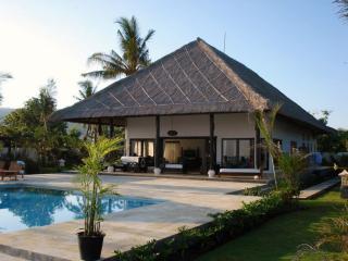 Nice 2 bedroom Villa in Lovina - Lovina vacation rentals