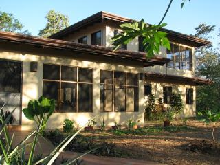 Junquillal, Guanacaste, Costa RIca - Coffee with the Monkeys! - Playa Negra vacation rentals