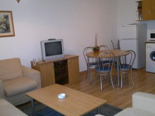 One bedroom appartment with fireplace. - Pamporovo vacation rentals