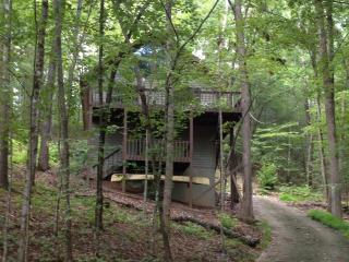4 bedroom Chalet with Deck in Murphy - Murphy vacation rentals