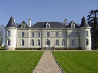 Beautiful Loire Valley chateau with pool & views - Savigny-sous-Faye vacation rentals