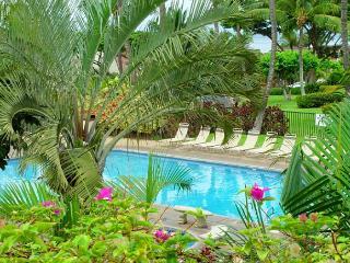 Maui Kamaole J-221 Spectacular 2B 2Bath Ocean View: Great Rates! - Kihei vacation rentals